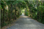 shaded walking trail in J F Gregory Park